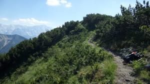 Wundertrail auf 2000 Meter: sieht so aus, als wäre ich fast über der Zugspitze ;-)